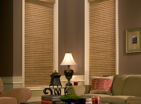 Surprise Natural Woven Wood Shades Window Treatments