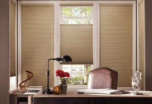 Refreshing Surprise Window Coverings for Spring